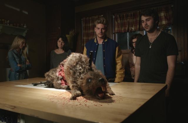 Wrecked beaver.